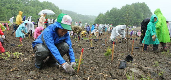 tree planting activities in japan aeon environmental foundation