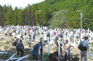 Tree-planting in Miyagawa Village (currently Odai Town) , Mie Prefecture