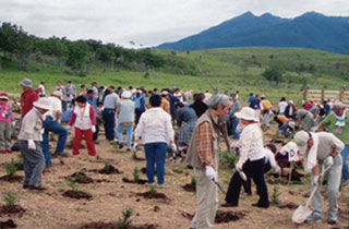Shiretoko Reforestation / Tree-planting Activities