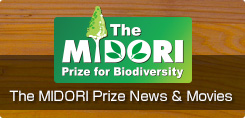 The MIDORI Prize News & Movies