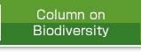 Column on Biodiversity