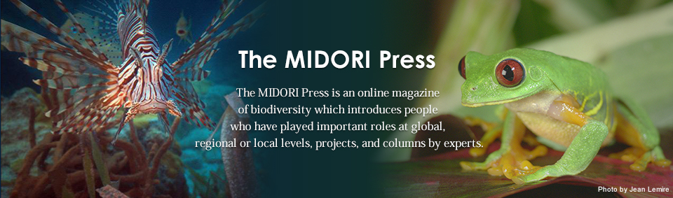 The MIDORI Press