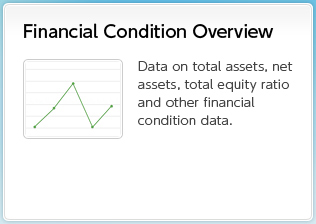 Financial Condition Overview Data on total assets, net assets, total equity ratio and other financial condition data.