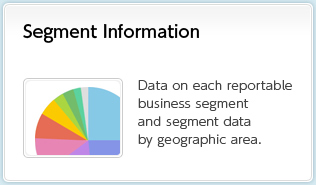 Segment Information Data on each reportable business segment and segment data by geographic area
