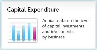 Capital Expenditure Annual data on the level of capital investments and investments by business.