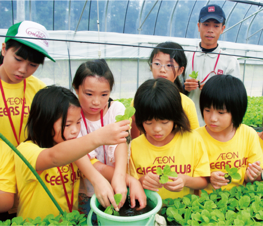 Children observing the roots of small-sized Chinese cabbages grown long.
