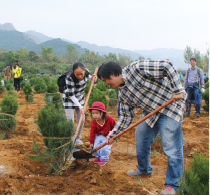 The first tree-planting in Miyun, Beijing on October 15
